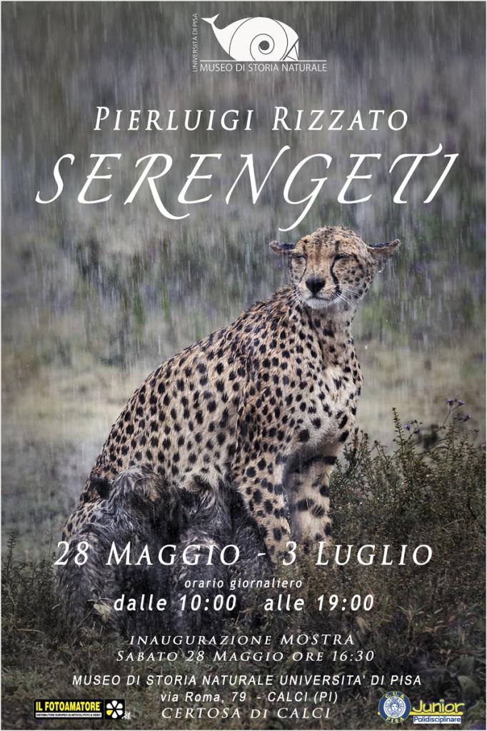 Pierluigi Rizzato Serengeti Certosa Calci Pisa 2016