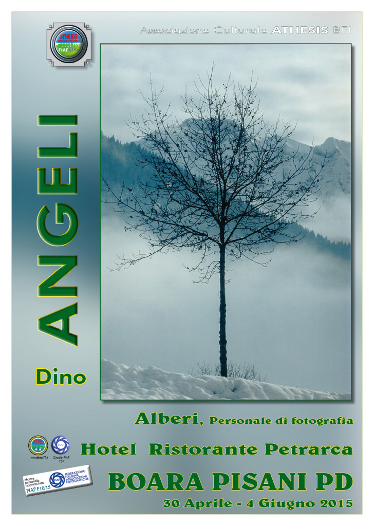 Angeli 2015