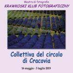 Collettiva / Circolo di Cracovia (POL) > Rovigo