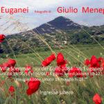 Colli Euganei / Giulio Menegazzo / Vò Euganeo PD