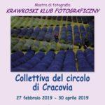 Collettiva Circolo Cracovia (P) > Solesino